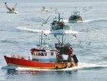 Fangquoten festgelegt